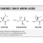 BCAA vertakte keten aminozuren header