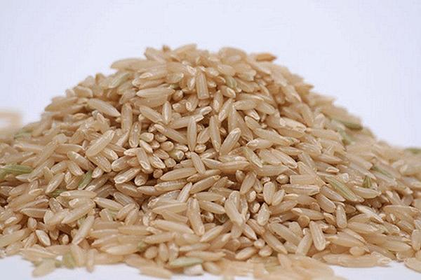 bruine rijst eiwitpoeder header